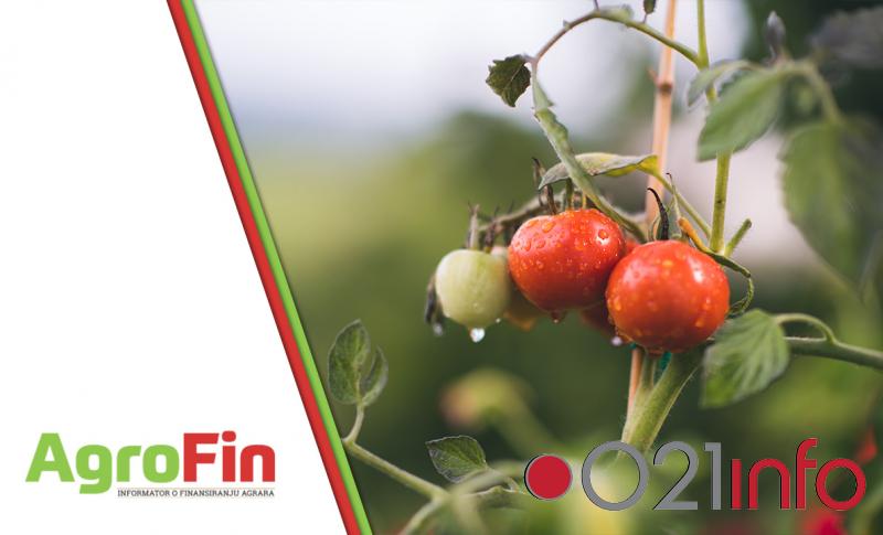 Grad Novi Sad podstiče mlade poljoprivrednike na organsku proizvodnju