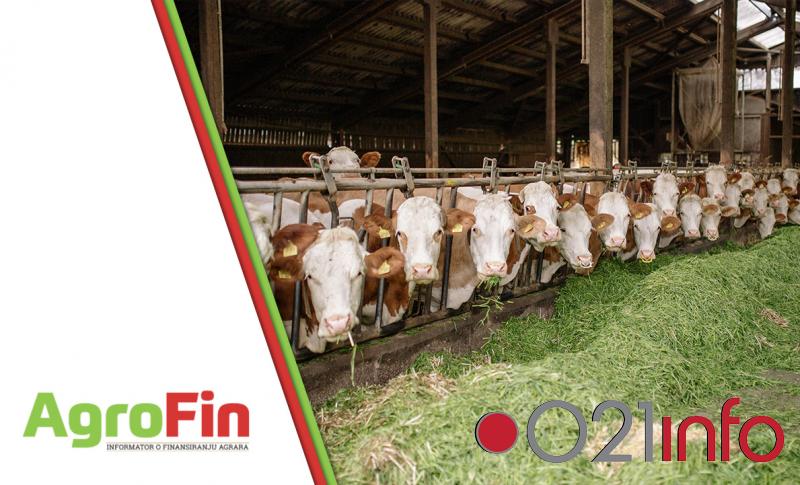 Pokrajina daje bespovratna sredstva za opremanje stočarskih farmi