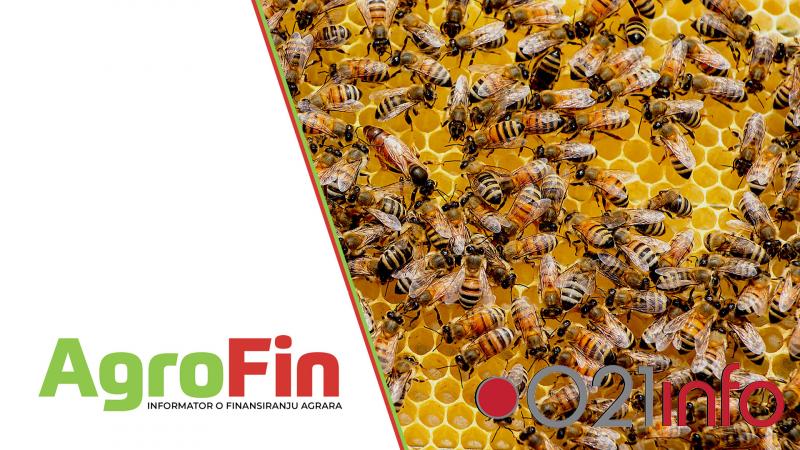 Pčelari od marta mogu da računaju na značajnu podršku investicijama u proizvodnju